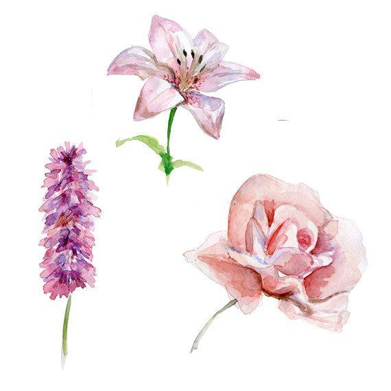 Roos  lelie en roze bloem Aquarel  Set van 3 prints  door Zendrawing, €40.00