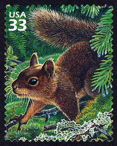 33c Douglas Squirrel and Foliose Lichen single, 2000  More about #stamps: http://sammler.com/stamps/ Mehr über #Briefmarken: http://sammler.com/bm
