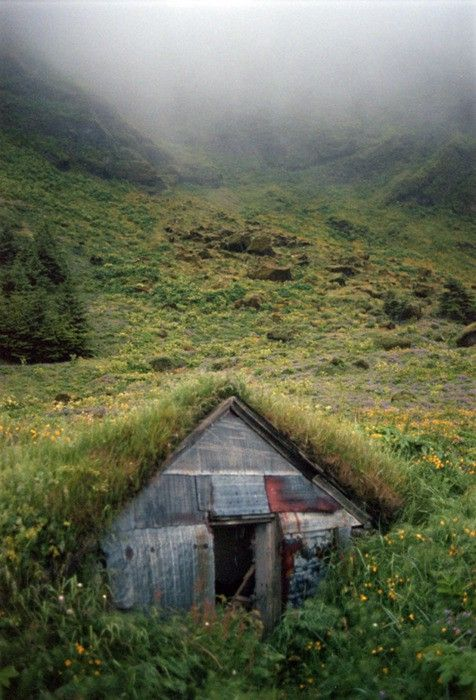 Secret cabin embedded in the hillside with grass and flowers growing on the roof