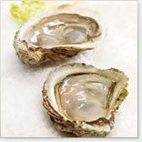 Oysters on the Half Shell, spicy vinegar sauce