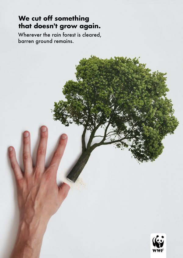 this advertisement campaign, is so relevant to the national trust project because it deals with the same subject matter, protecting and preserving nature. One is exotic and one is local, that is the only difference. The connection of the body parts with the tree trunk is the clever part of the advert. It shows how by cutting down forests we are also hurting ourselves.