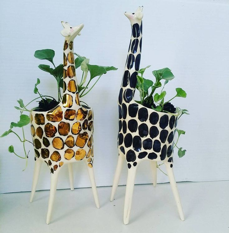 endearing house plants types. culturenlifestyle  Cute Ceramic Sculptures by Gail from C Ceramics is a ceramic artist based in Brisbane Australia crafts endearing little 2249 best Platiii images on Pinterest Indoor house plants Home