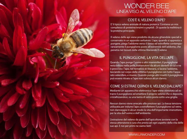 Come si estrae il veleno dall'ape?