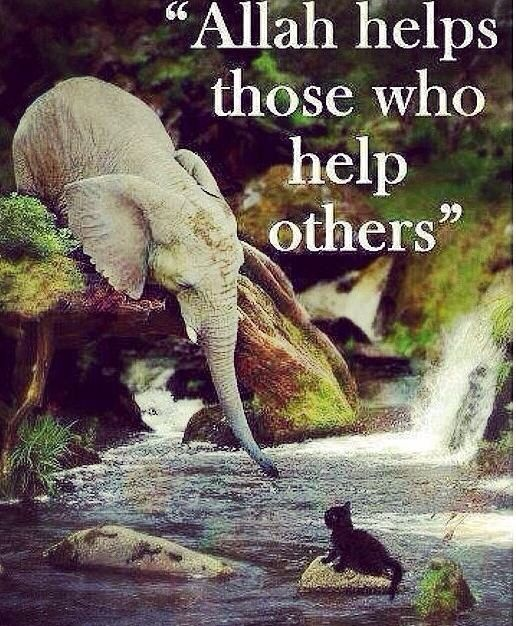 Allah helps those who help others
