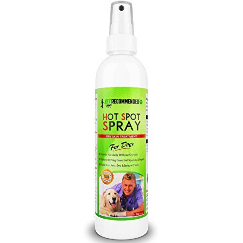 Vet Recommended  Hot Spot Treatment For Dogs  Relieves Dog Dry Skin  Antifungal Spray for Treatment  Use For Allergy Treatment Hot Spots for Dogs By Using Our Safe Dog Anti Itch Spray 8oz240ml *** Find out more about the great product at the image link.