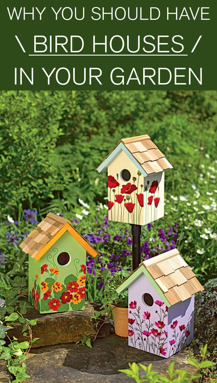 Bird House Plans Beside singing and bringing joy in your garden, birds are an awful enemy against...