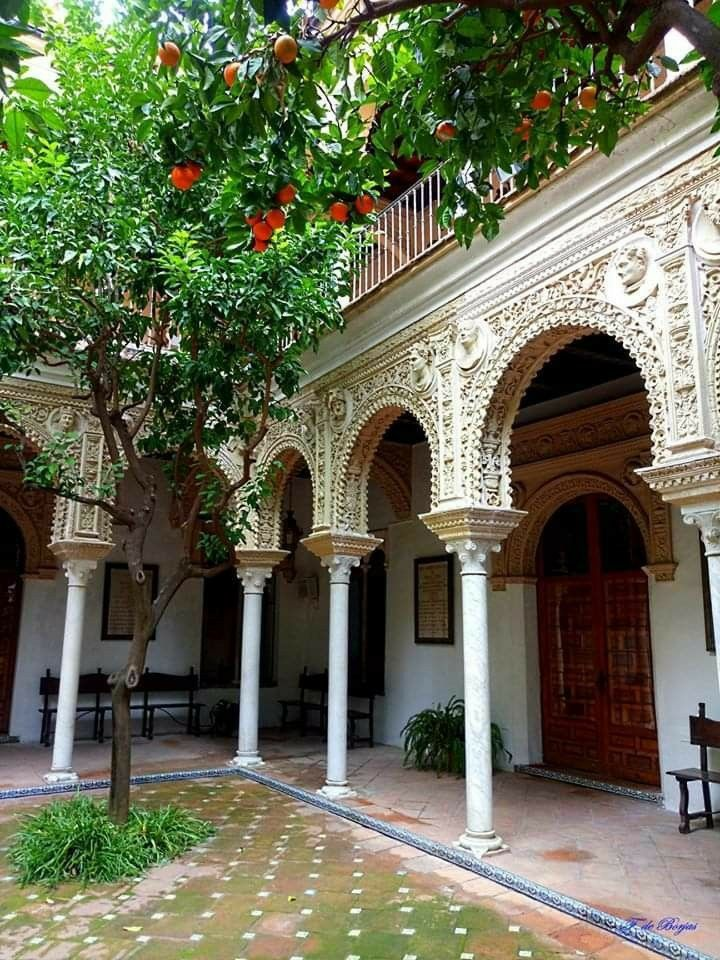 Rincones De Sevilla Sevilla Casa Con Patio Patios