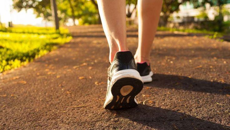 Dagelijks minstens een half uurtje lopen, daar kan geen pil tegenop. Hart en longen worden er sterker van, je geheugen wordt beter. En het is heel goed voor je humeur. Zeker als je altijd met iemand samen loopt.