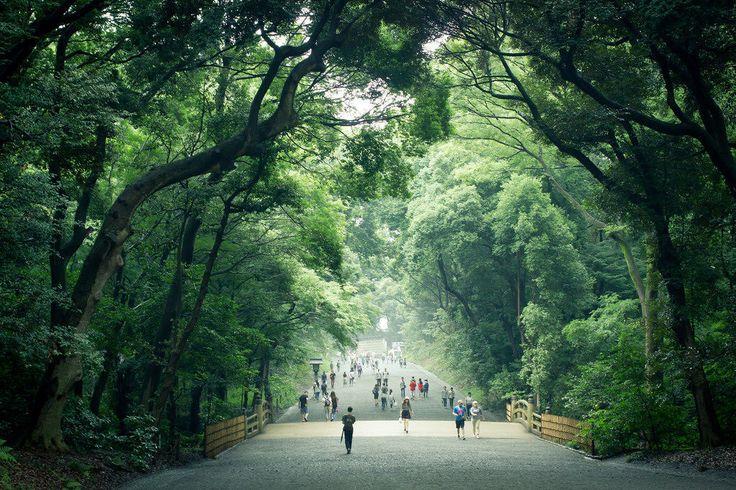 明治神宮 Meiji-jingu(1024×683)