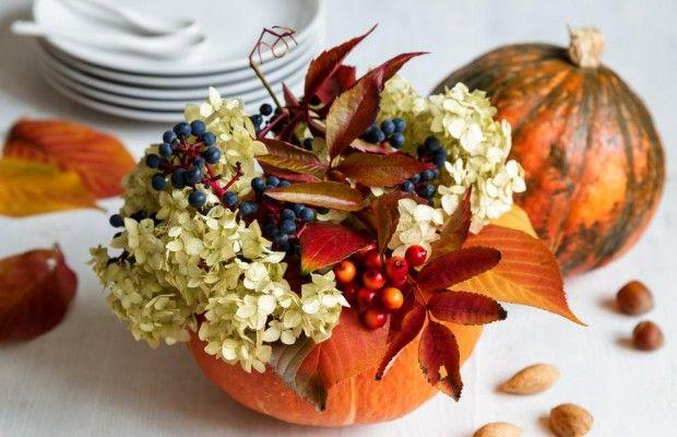 Pumpkins/ dekorace z dýně