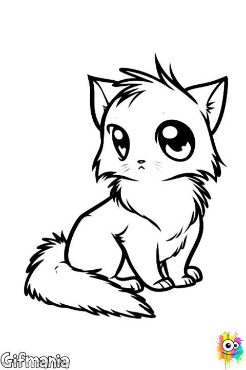 Manga Cat Cat Animal Manga Drawing