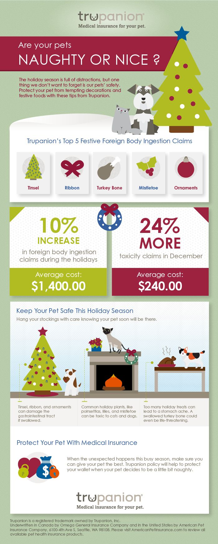 Pin By Kathleen Cook On Pet Health Wellness In 2020 Pet Holiday Pet Hacks Pet Health