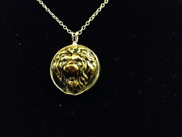 12 best baby squirrel studio images on pinterest baby squirrel fierce lion face pendant aloadofball Gallery