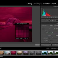An In-Depth Guide to Infrared Photography: Processing. Article by Chris Swarbrick.