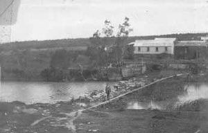 Dam and tannery at Cooks River, Canterbury, 1901