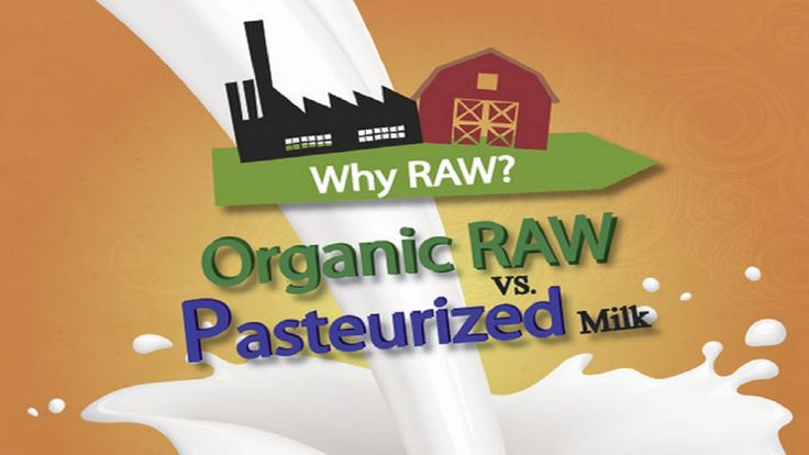 Raw Milk versus Pasteurized - Which Is Safer?