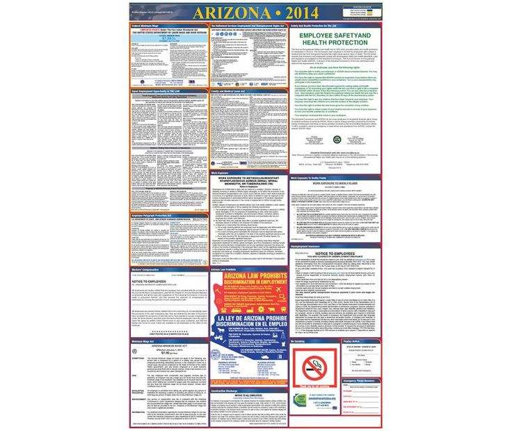 Labor Law Poster, ARIZONA, 39X27 STATE AND FEDERAL