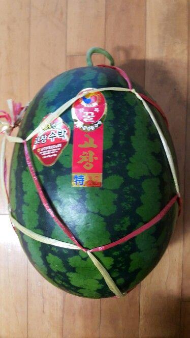 경남 고창수박 Gochang Watermelon ♡ 맛! 기대됩니다^^