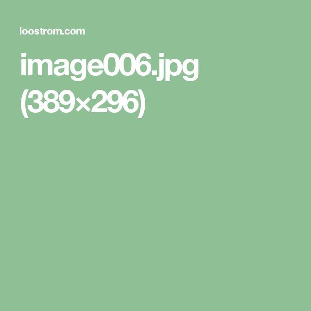 image006.jpg (389×296)