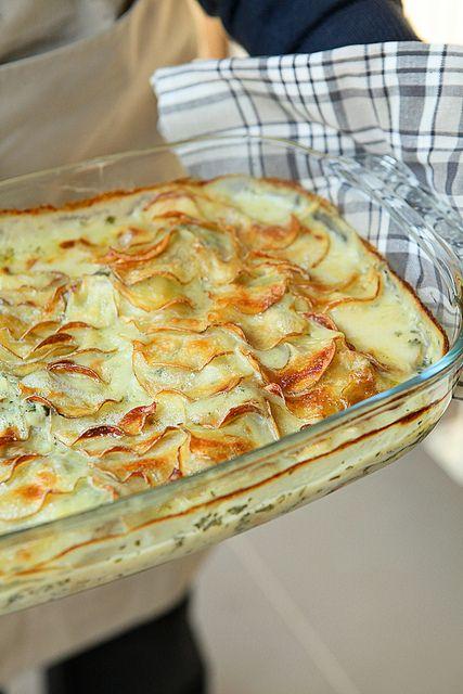 Photo-copy: Zalig lekkere ovenschotel met gewone en gerookte vis.