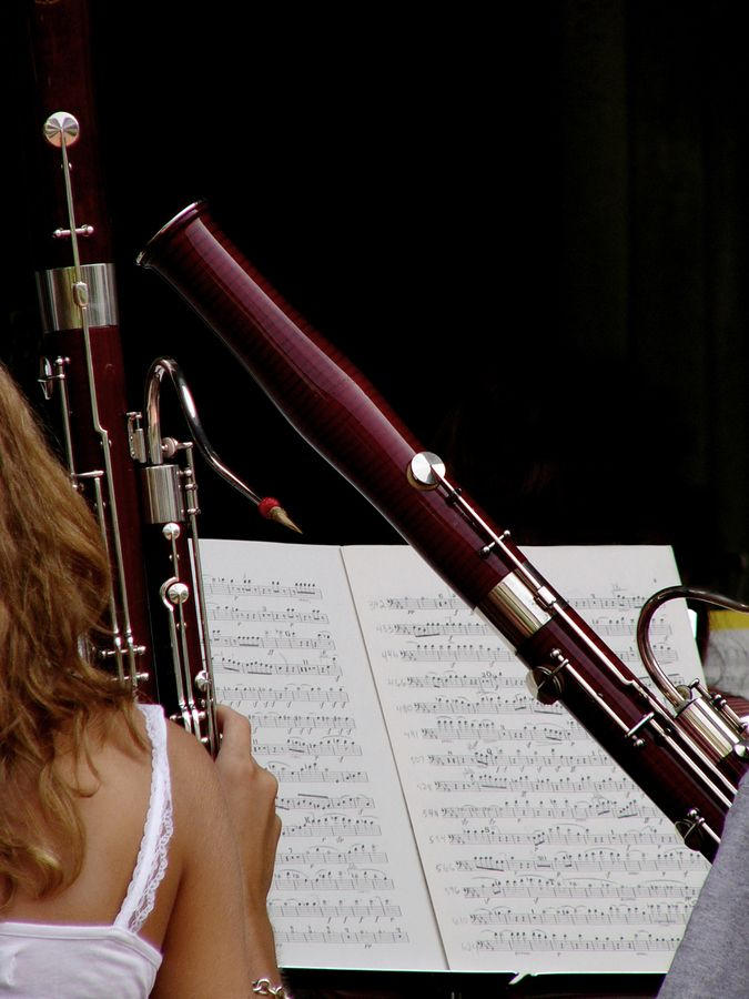 1000  images about bassoon on pinterest
