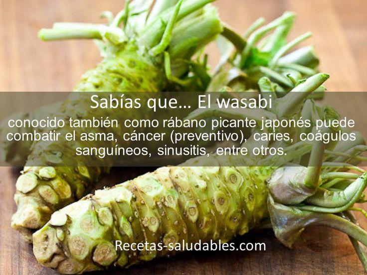 Propiedades y recetas saludables con wasabi en:  http://www.recetas-saludables.com/wasabi.html http://www.remediospopulares.com/wasabi.html
