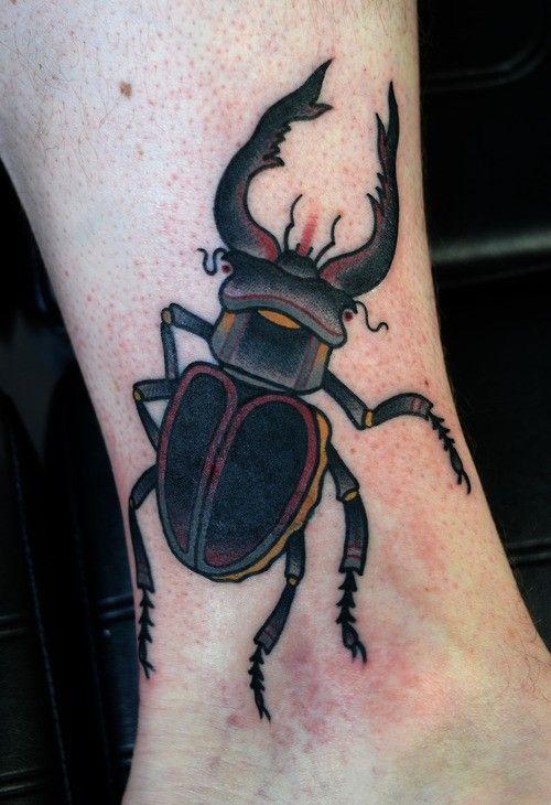 best 25 bug ideas on bee honey