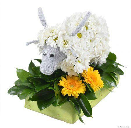 Flower goat )))