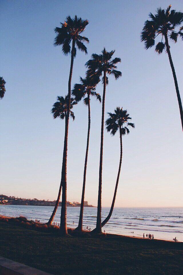 Image Result For Sunset With Palm Trees Tumblr Night Pemandangan Wallpaper Ponsel Fotografi