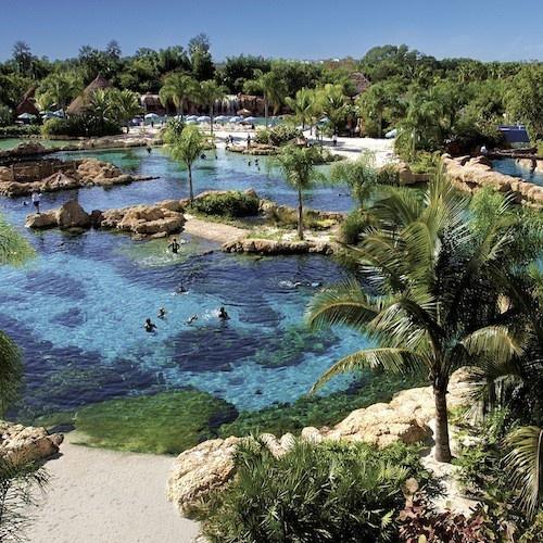 Discovery Cove, Orlando