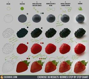 Exercise 36 Results: Berries Step by Step Chart by ConceptCookie.deviantart.com on @DeviantArt