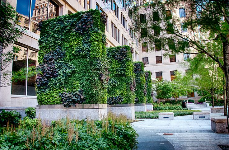 10 Best Walls Images On Pinterest Therapy Boston And
