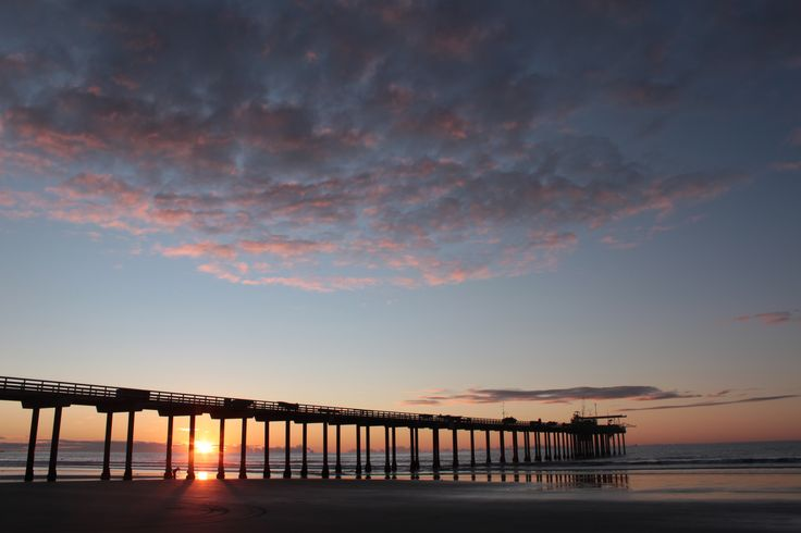 Back to the Sea, and other thoughts | Learning and living with the ...