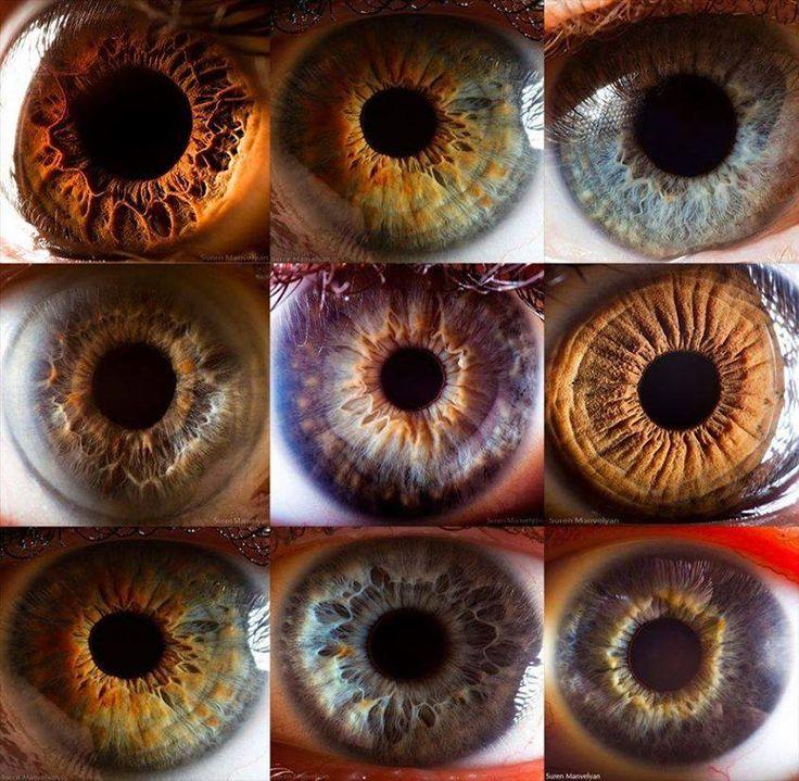 62 best eyes and iridology images on Pinterest