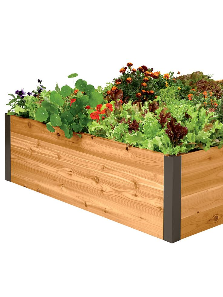 Deep Root Cedar Raised Beds 4 Ft | Gardeneru0027s Supply