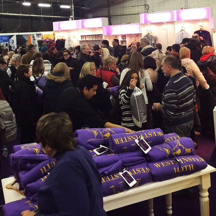 It's been a busy day at the Westminster Kennel Club Dog