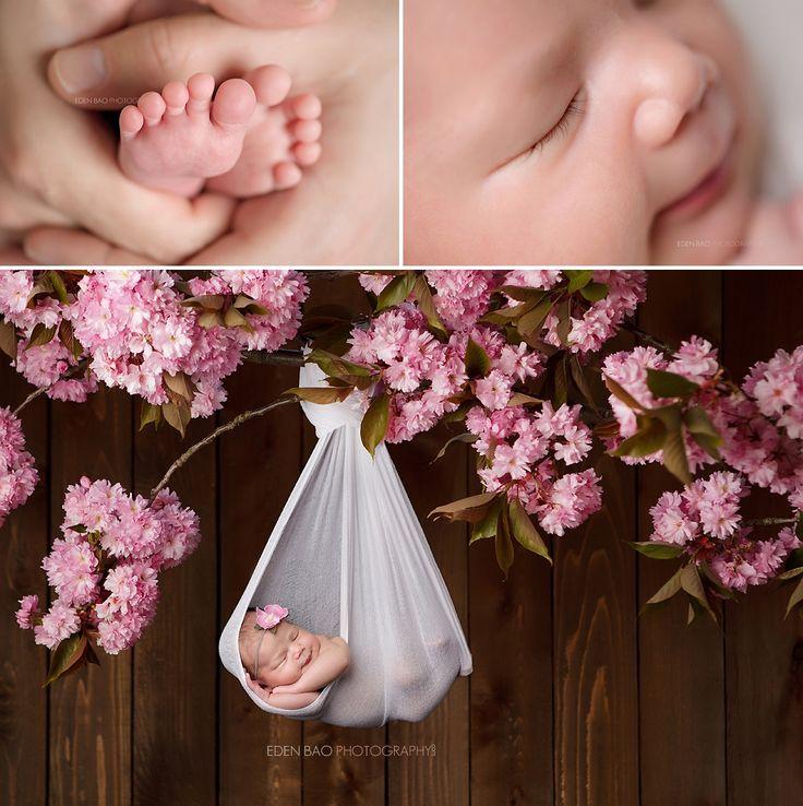 Newborn Photography Seattle Eden Bao hanging cherry blossom branch