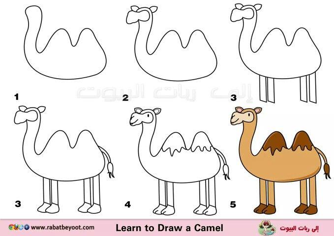 Camello dibujo facil pinterest for Sillas para dibujar facil