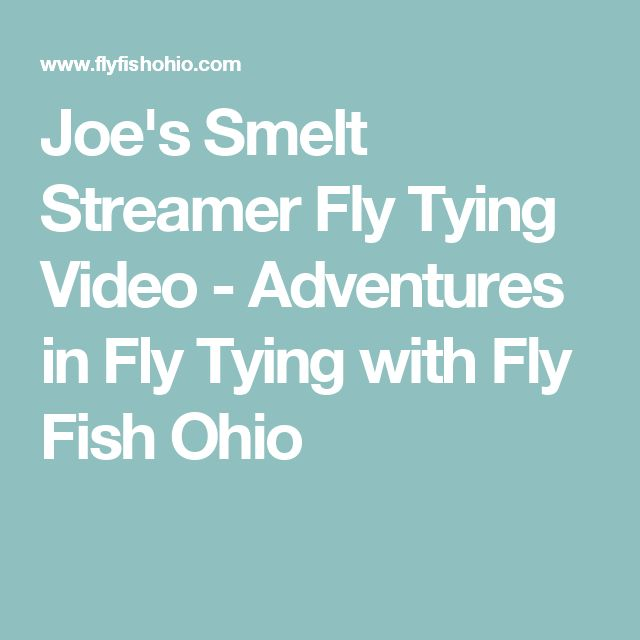 84 best streamers images on pinterest fly tying for Fly fishing ohio