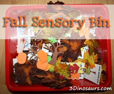 Fun Fall Sensory Bin using fake leaves, stickers, cookies cutters and picture cards. 3Dinosaurs.com