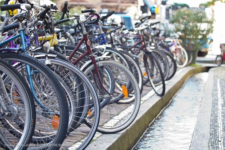 Bicis y canales