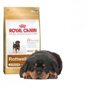 Alimento a medida para cachorros de la razaRottweilerde 2 a 18 meses #perro #dog #royal canin #rottweiler