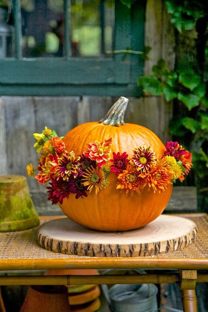 I'm always looking for new way to design floral displays & pumpkins & gourds are the perfect shaped vessels. It starts with going to the farm stand & picking out unusual & interesting pumpkins & gourds.