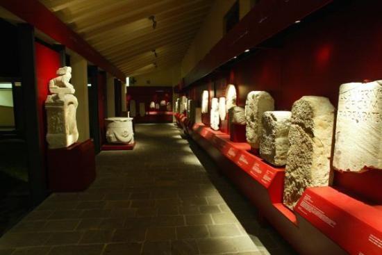 **Museo Archeologico Nazionale di Adria (artifacts found in the area) - Adria