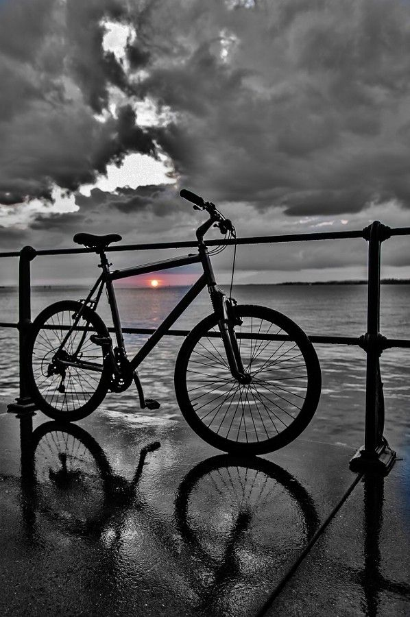 70 best images about Bicycle Reflection Art on Pinterest ...