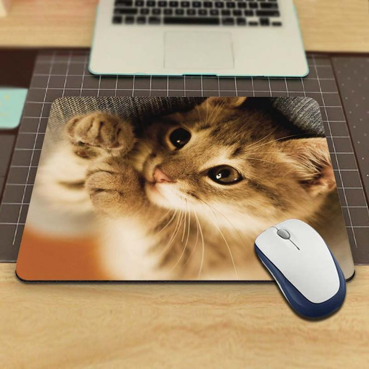 Animals Cats Funny Custom Mouse Pad for Size 18*22cm and 25*29cm