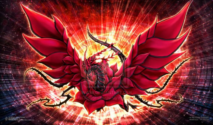 Black Rose Dragon by shufflepod on DeviantArt
