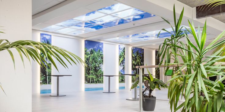 Albeda College | Vlaardingen.  Lumick standard #LED cloud ceiling. www.lumick.com Interior Design - Healing Environment - Architecture