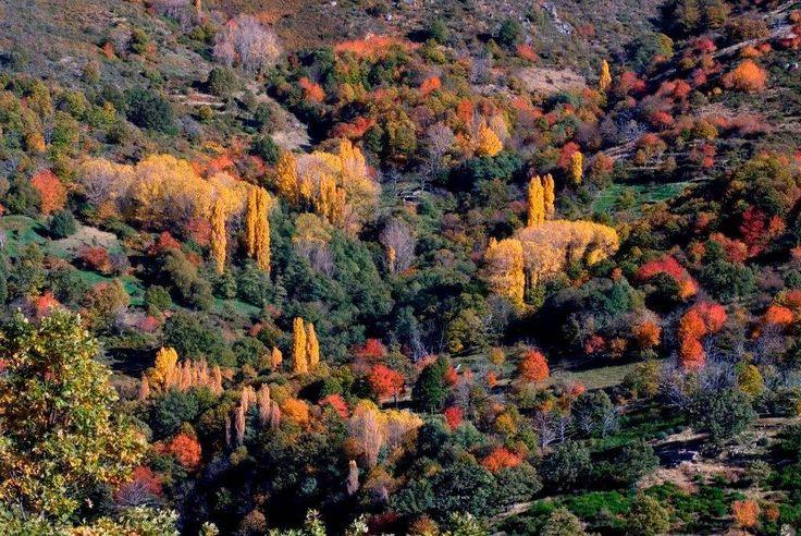 Valle del Ambroz , Cáceres.