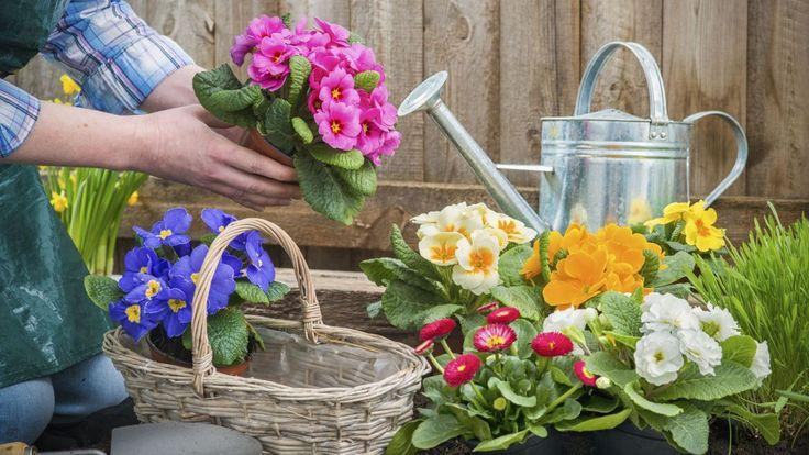 Les beaux jours arrivent et le temps des semis aussi. Outre les ustensiles habituels que sont les traditionnels pots et sacs de terreau, il est de bon ton de s'équiper d'objets ingénieux qui faciliteront la culture de son morceau de terre.